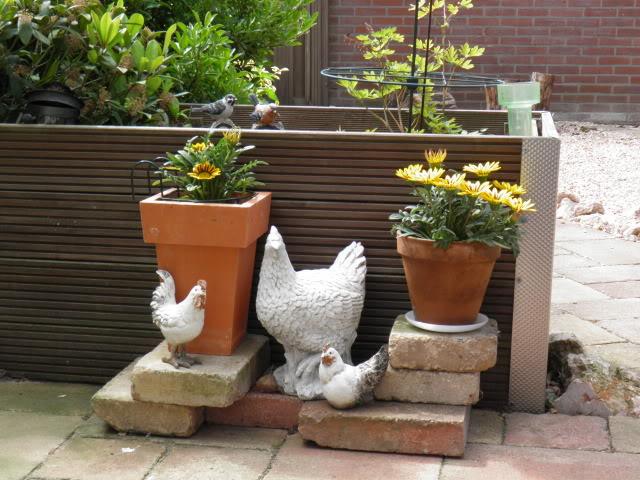 Jardins P5200005