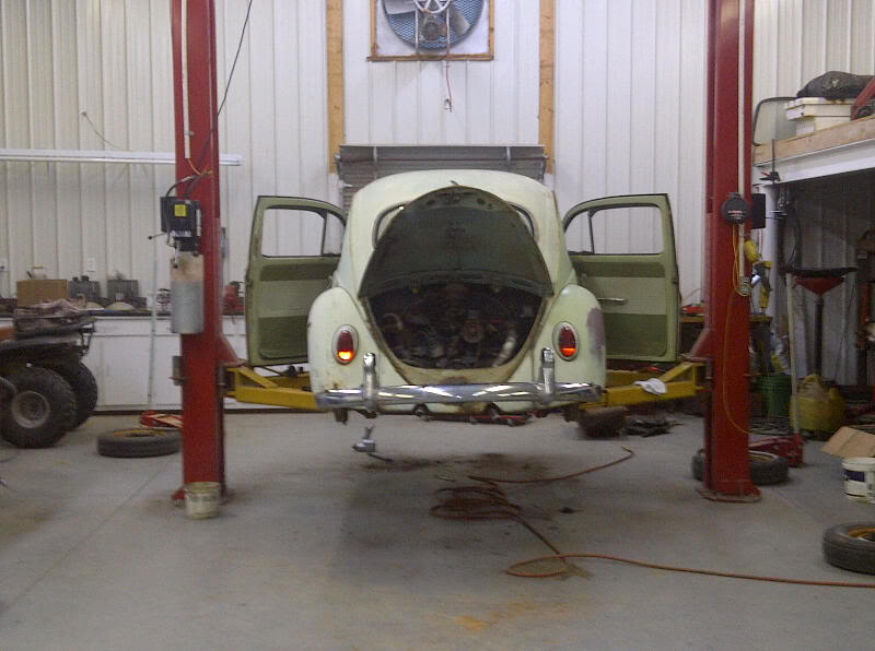 my 63 beryl green bug IMG-20120212-00082