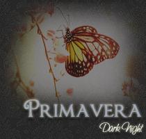 Dark Night Prm