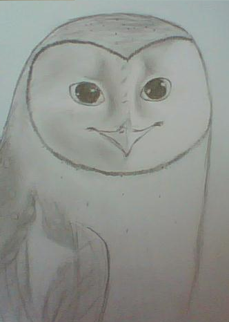 Bear's Drawings and other Art :3 Soren