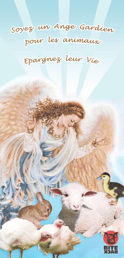 """affiche """"soyez un ange protecteur des animaux""""+ demande conseil French_medium_web"""