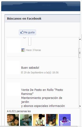 Css para widget de estados de facebook Dibujo-11