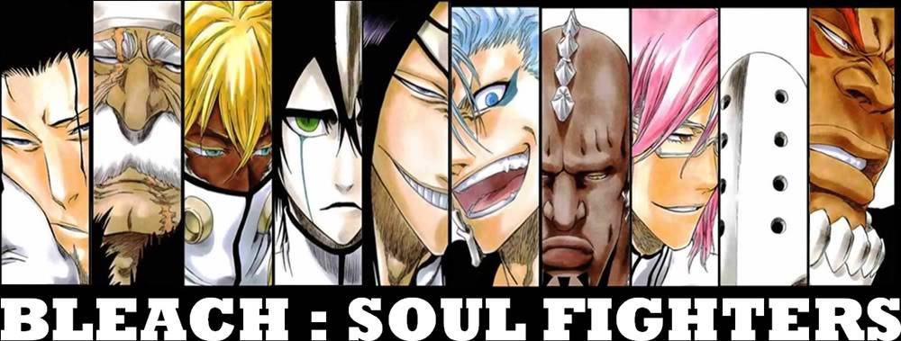 Bleach:Soul Fighters Banner-1