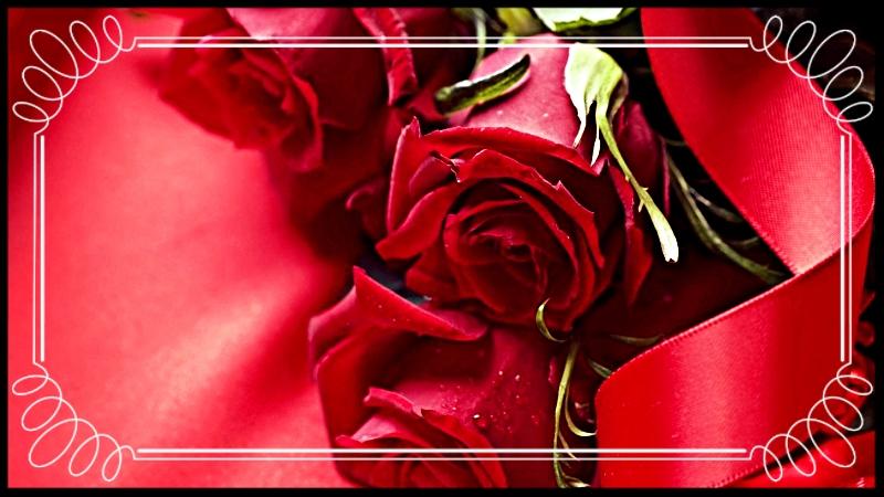 photo 607aa2ba-873e-4038-9c22-296342557332_zpsvcraqcuc.jpg