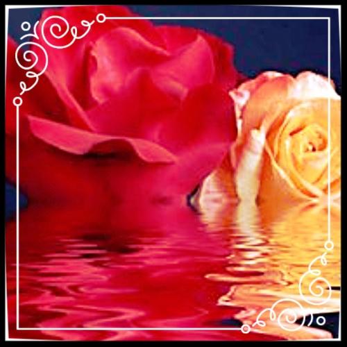 photo 1f5cabe4-7f3f-404a-a813-0ade6e87388a_zpsq5sppmsi.jpg