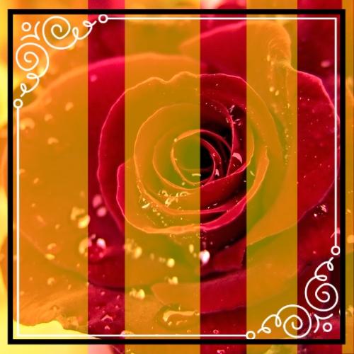 photo 942102cd-9d50-4505-a5df-b6af26380948_zps6iblqjsg.jpg