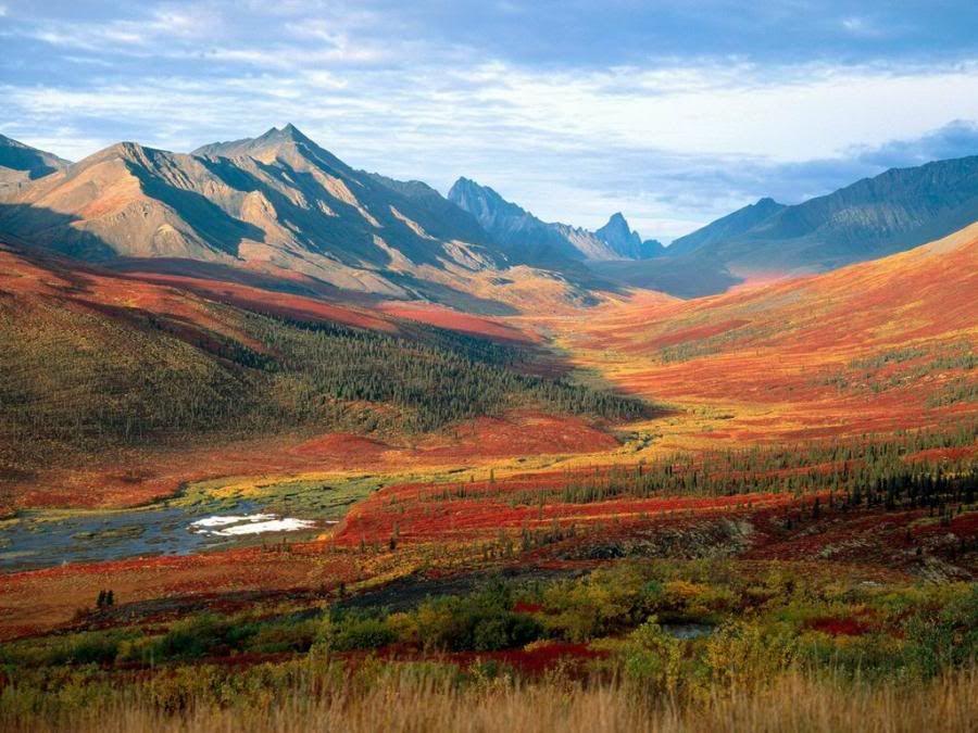 நான் ரசித்த மலைகளின் காட்சிகள் சில.... Mountains_autumncolors