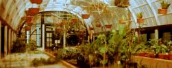 Invernaderos de herbología