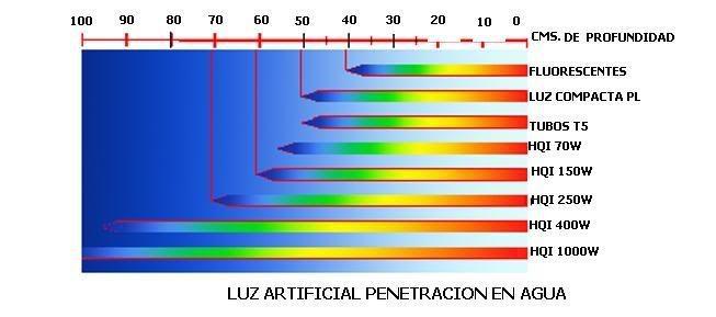 grafico intensidad de luz ILUM3F2
