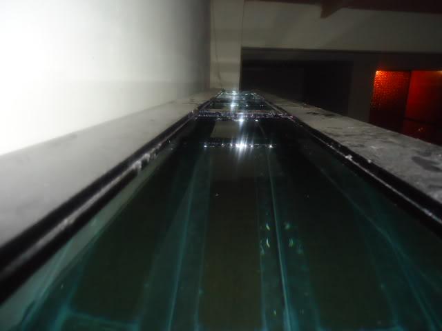 mi nuevo acuario de 220x80x40  largo,alto.ancho...ave fenix Nuevoacuario002