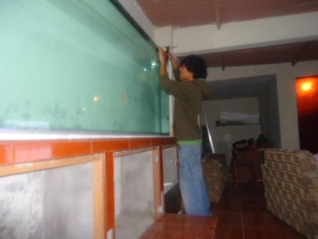 mi nuevo acuario de 220x80x40  largo,alto.ancho...ave fenix Nuevoacuario003