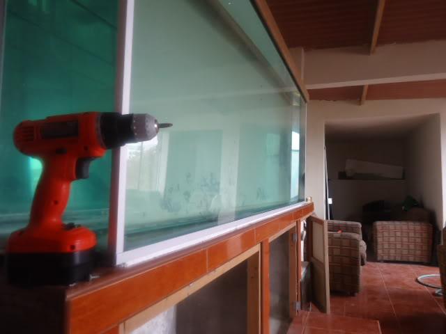 mi nuevo acuario de 220x80x40  largo,alto.ancho...ave fenix Nuevoacuario005