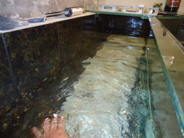 """acuario en  """"L """"  1600 litros etapa final Nuevoacuario115"""