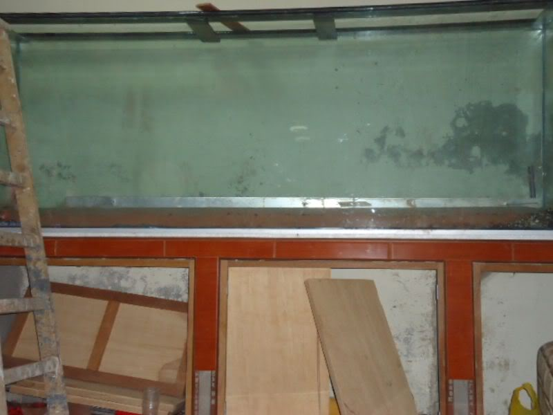 mi nuevo acuario de 220x80x40  largo,alto.ancho...ave fenix Xxsss