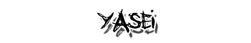 El Cuaderno de las Categorías, IV : Yasei Yasei
