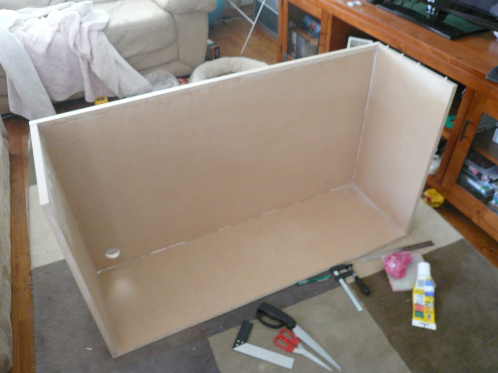 DIY ADA Style Cabinet P1030327