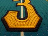 NBA Rev 30 Limited Edition Pro Cut Jerseys Th_P1010357_zps393fba0b