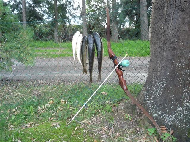 moulinet pour la chasse au rag - Page 4 Pechedu18012011001Small