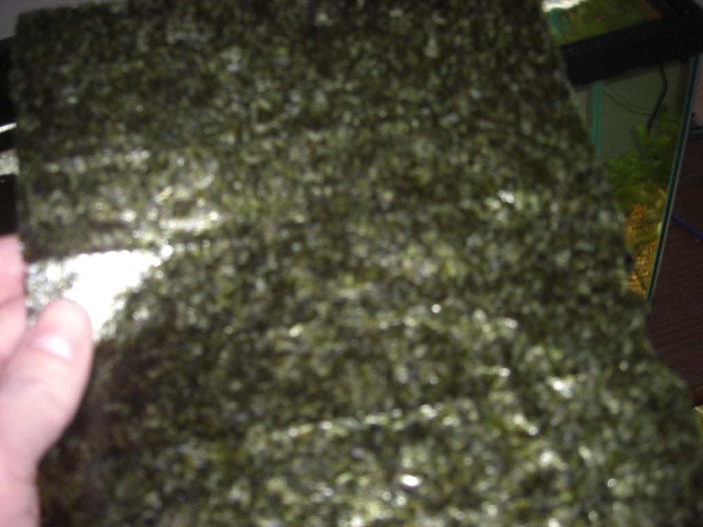 Algae Sheets Algaesheets001