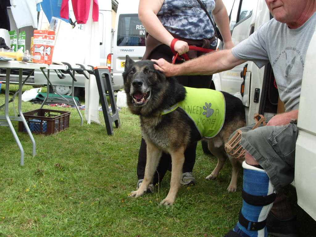 Bob Evicted by Court Order homed S1050680
