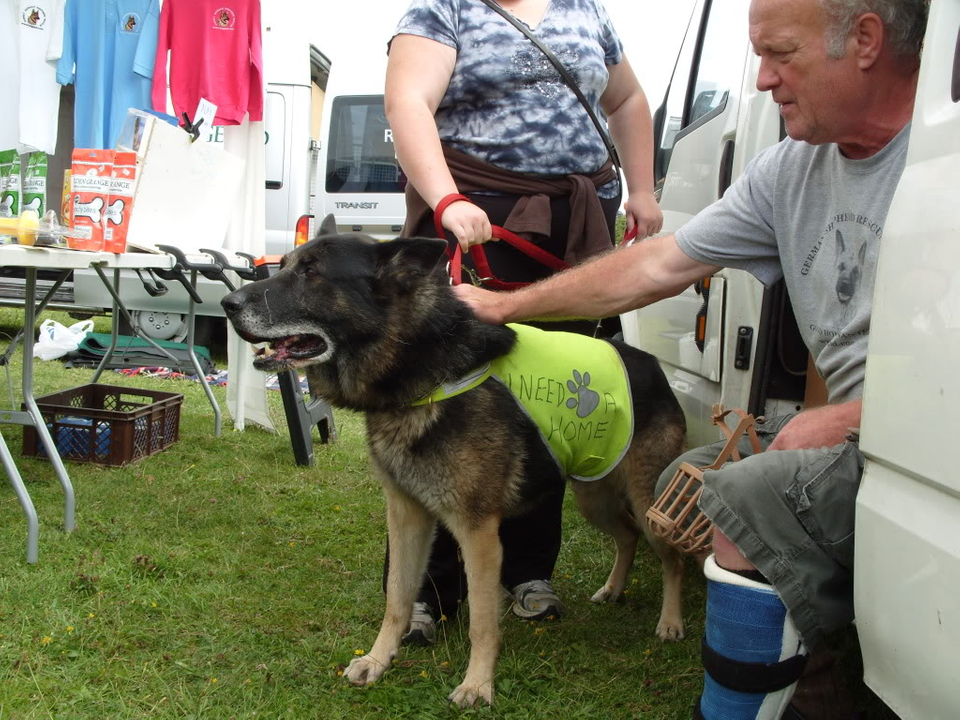 Bob Evicted by Court Order homed S1050681