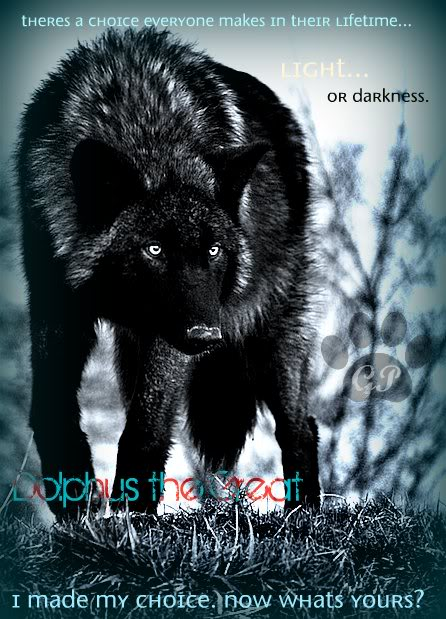 Just look... please? :) Black-wolf-wolves-24308868-500-668