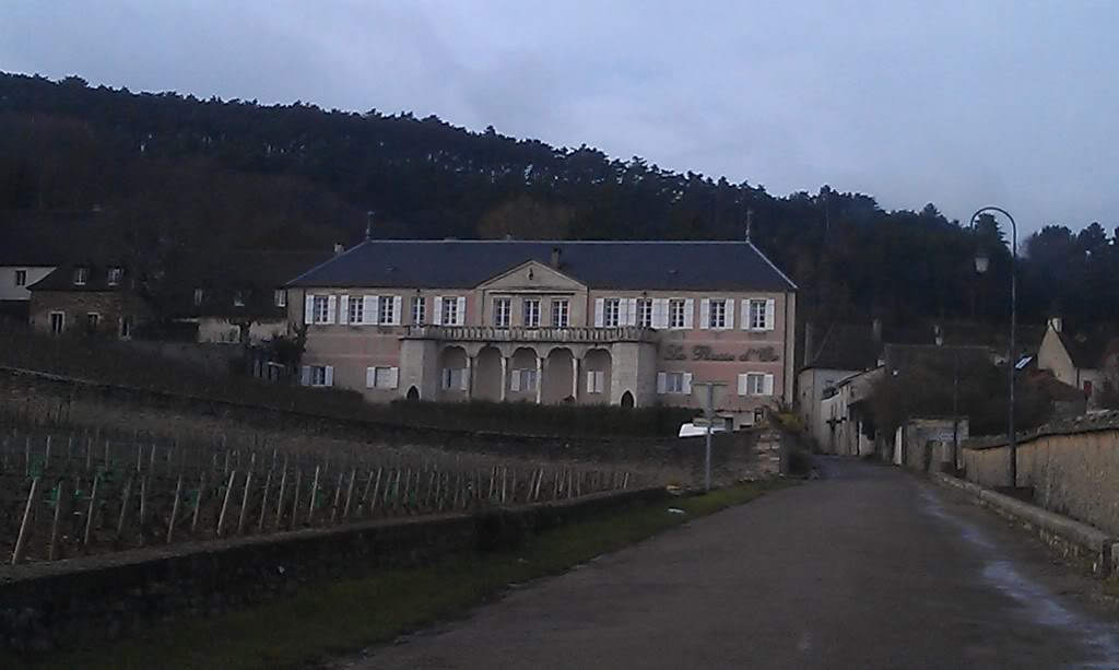 Visite au Domaine de la Pousse d'Or à Volnay IMAG0194