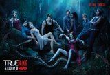 photo True-Blood-Poster-Do-Bad-Thing_zps0e7c4879.jpg