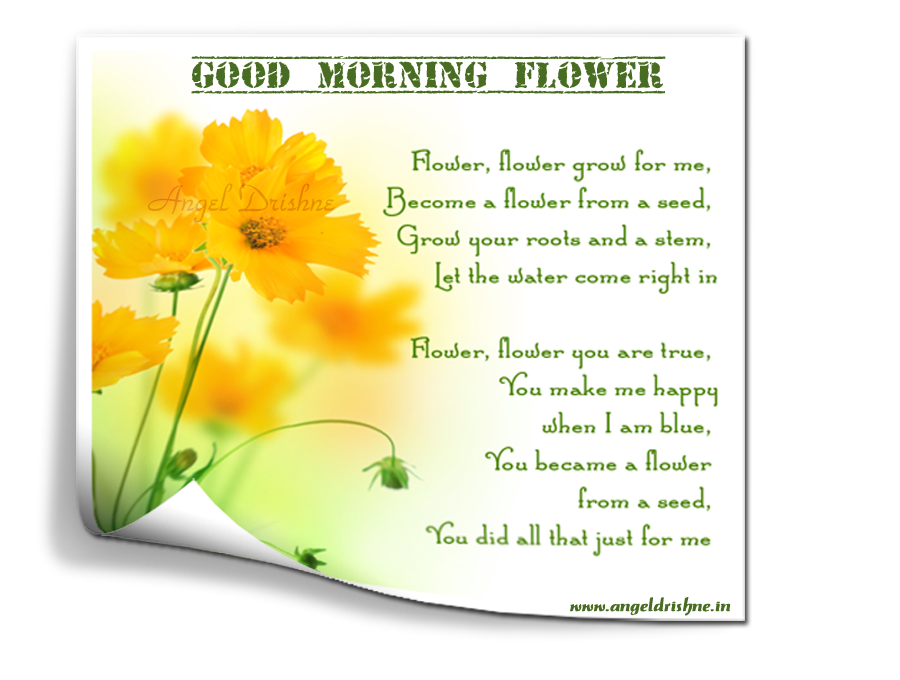 ~ Good morning  Card  design By Nanncian ~ - Page 2 Good-Morning-Flower