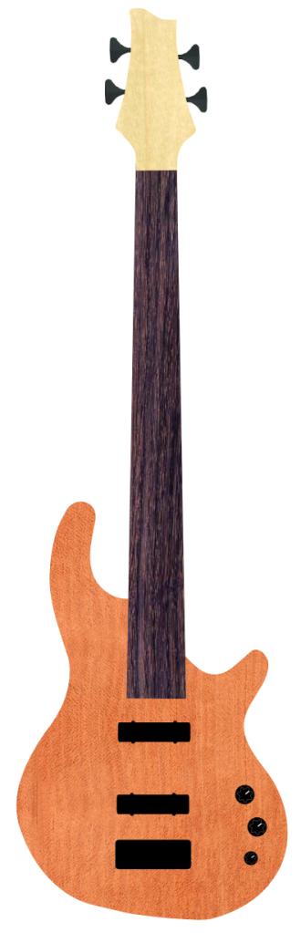 Fretless bass G8171