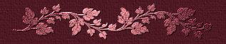 tabla roja Barrita-1