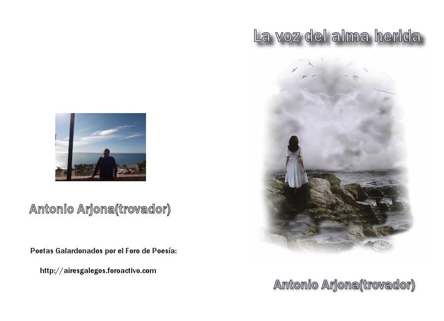 LIBROS DE POETAS PREMIADOS,  Trovador-_zps36b8f81d