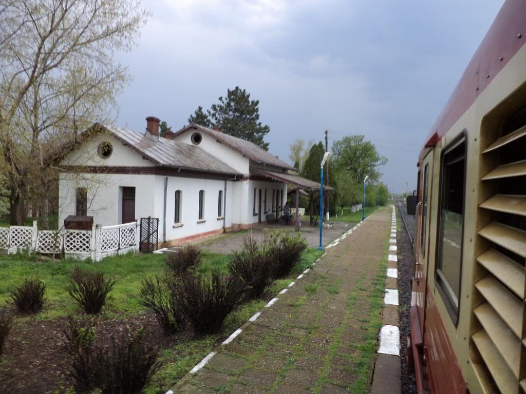 907 : Rosiori Nord - Costesti - Pagina 7 DSC00258_zps1abcffcf