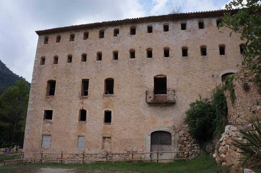 Cascadita de musgos en Mas de Forès (Alcover-Tarragona) DSC00497_zpsg9hxydej