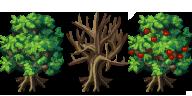 Recopilado de arboles [VX/ACE] Fsmtrees_soruve