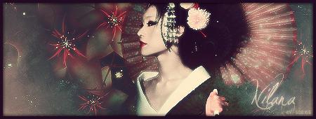 Nom de domaine Geisha1