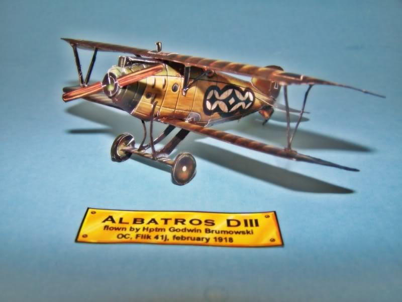 Albatros DIII En papel 100_8493