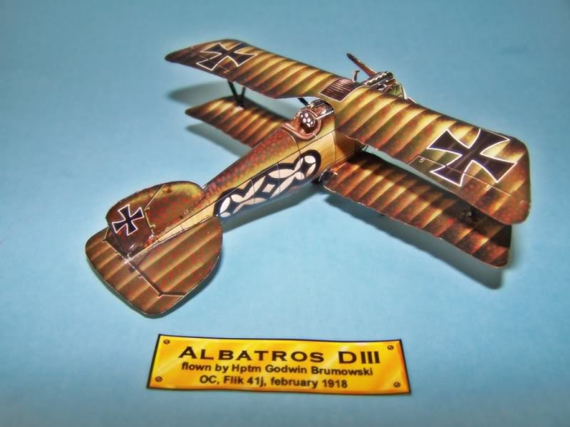 Albatros DIII En papel 100_8494