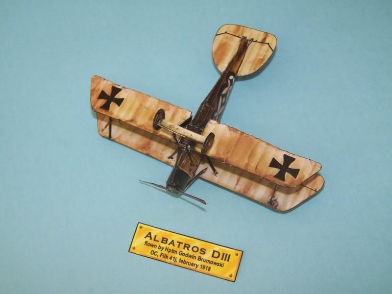 Albatros DIII En papel 100_8497
