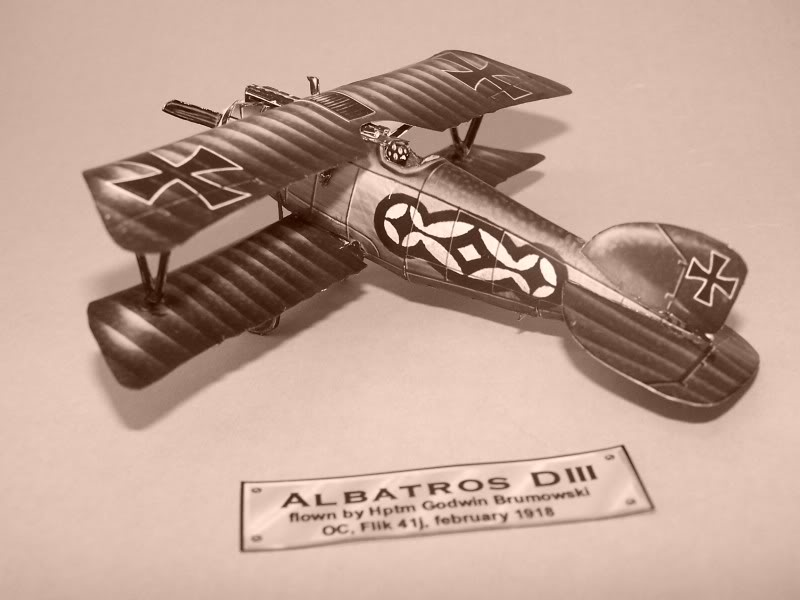 Albatros DIII En papel 100_8499