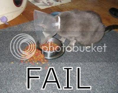 FAILS, For Ever Alone, FUck Yeah FAIL15