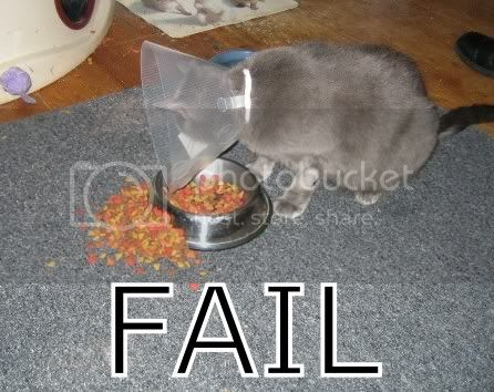 FAILS, For Ever Alone, FUck Yeah Fail