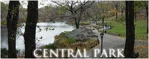 Foro gratis : Hi, Society! Central-Park