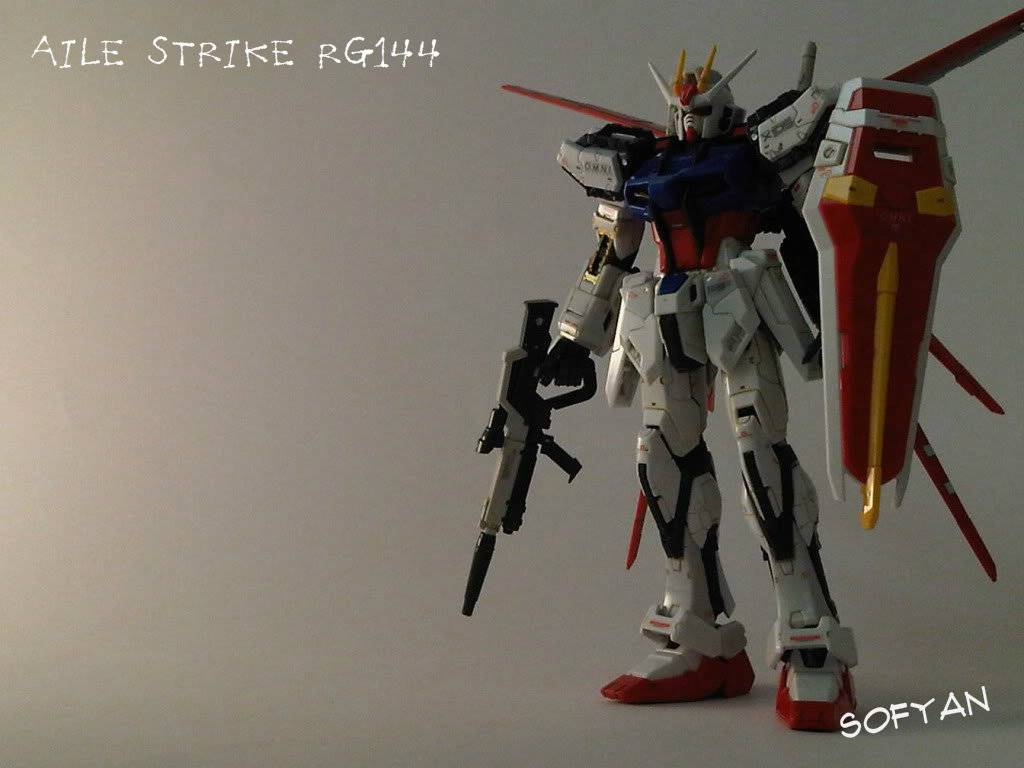 RG 144 Aile Strike and RX-78 IMG05709-20110803-1055