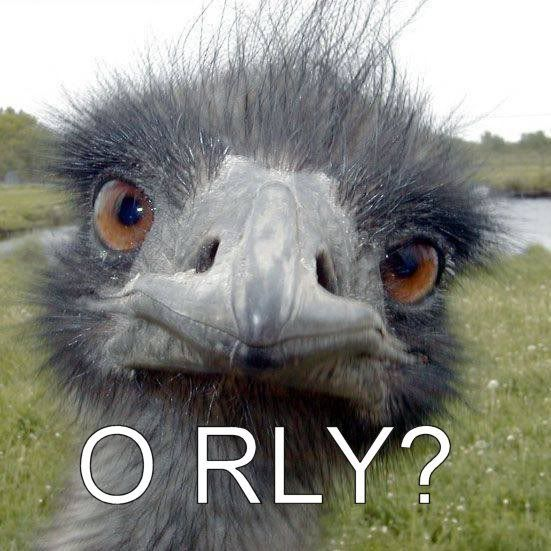 .. Orly-ostrich