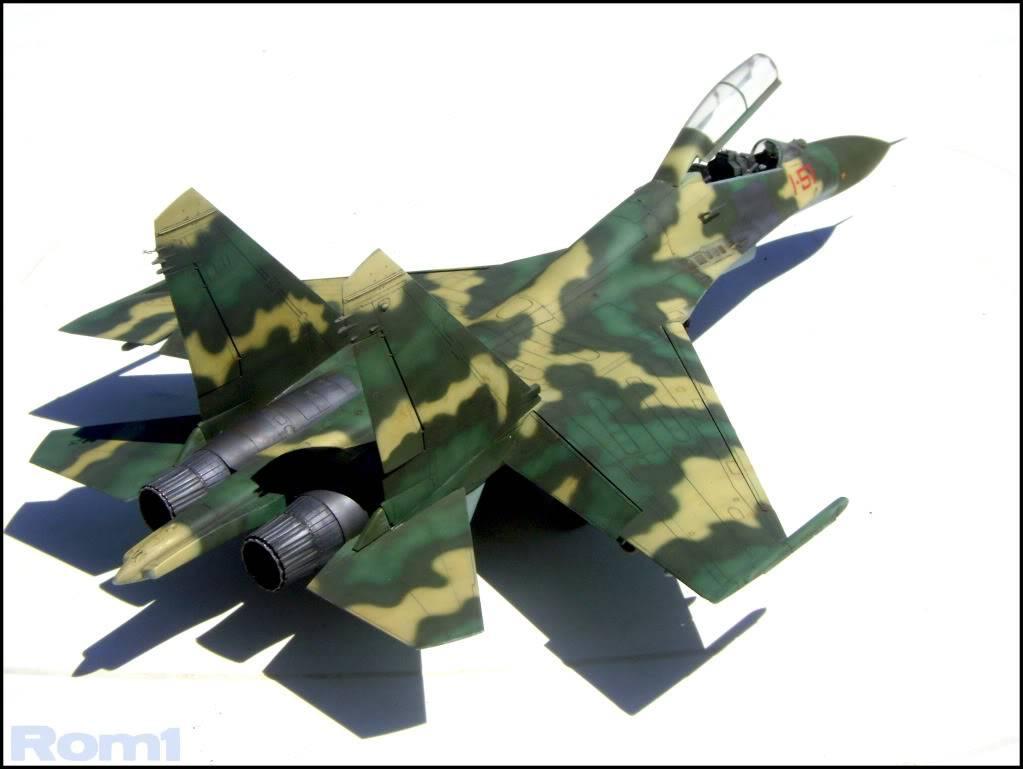 MiG 1.44 MFI [Revell 1/72 - MAJ au 19/08/12] Voilaaaaaaa c'est fini ! - Page 3 DSC02381copie