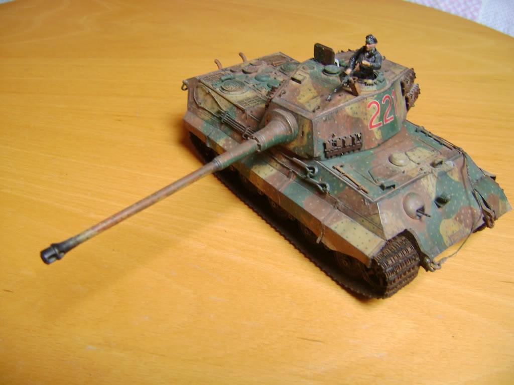 """Tigre I """"tiki""""   ---   Tigre II  [???]   -Rom1- DSC01040"""