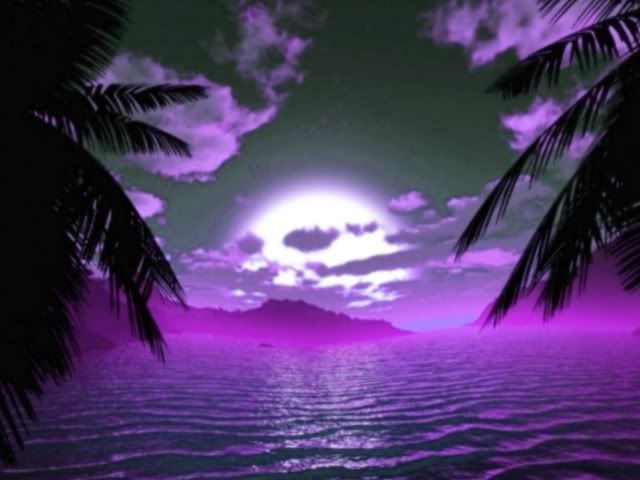 Interesting Images.. - Page 5 Purple_Sunset-1