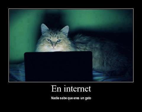 Compartamos una imagen EnInternet
