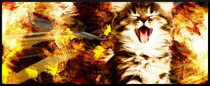 GFX Team Meow3